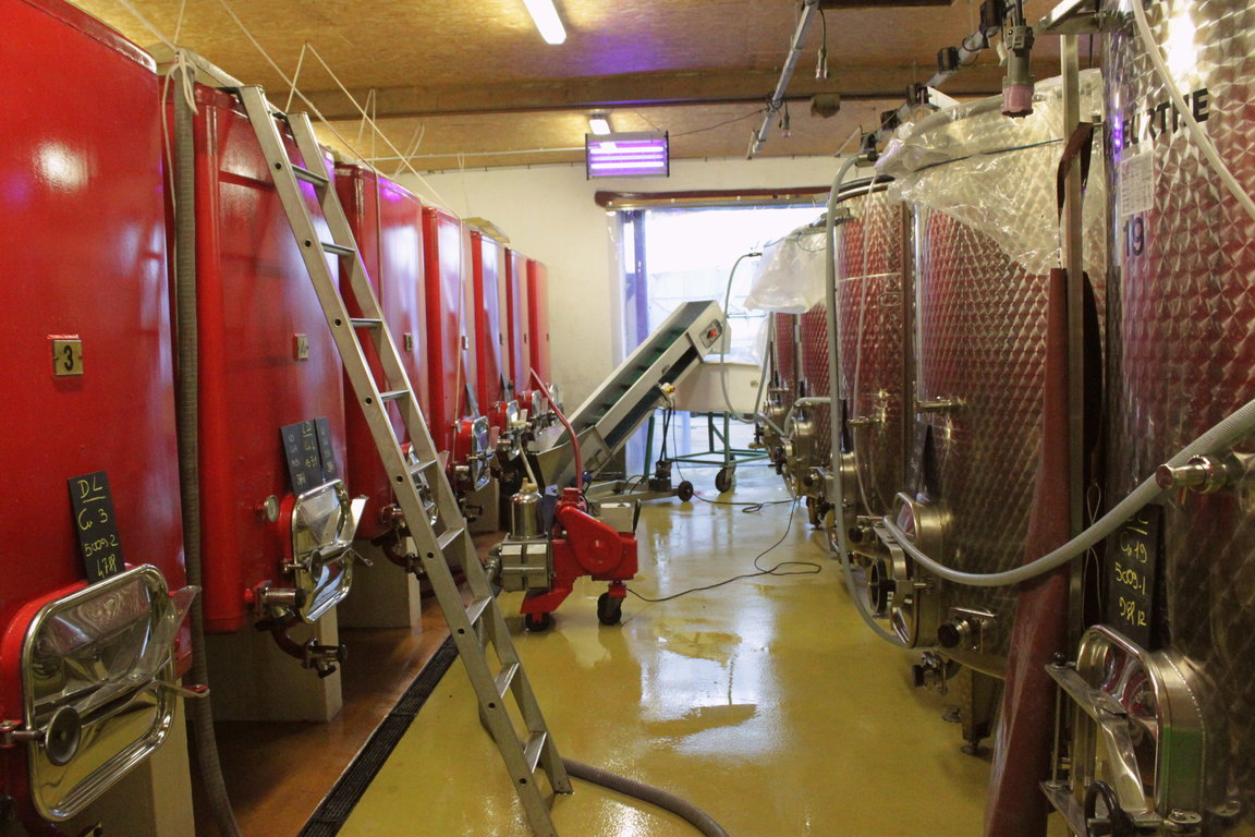 Winery - Working atmosphere
