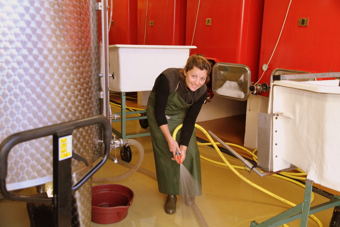 Winery - Cleaning